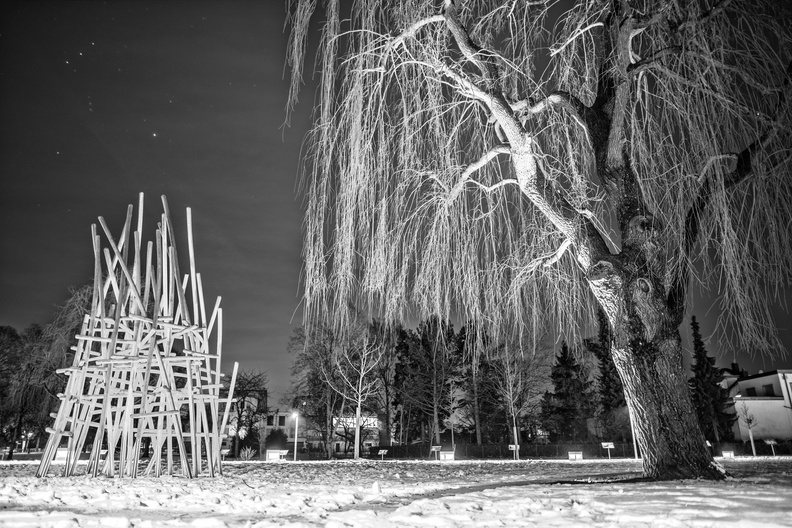 A tree and playground at night