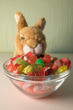 A Rabbit's diet