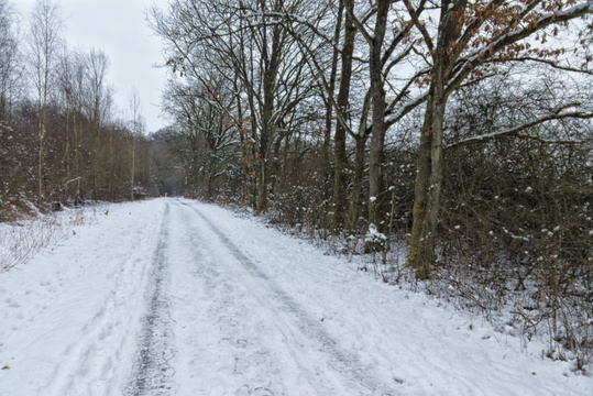 Cycleway in winter