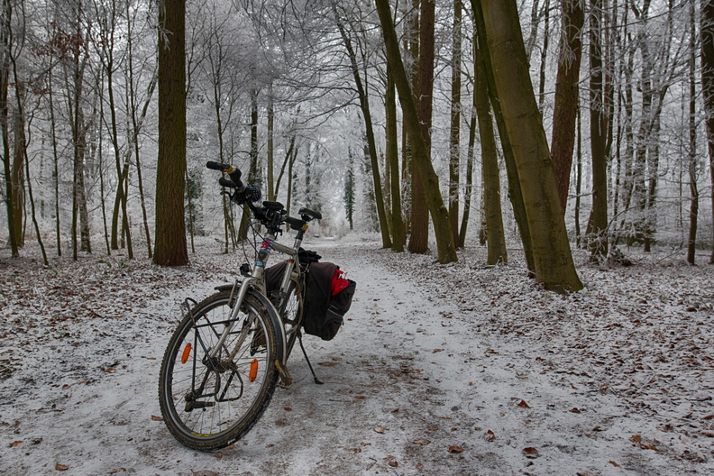 Bike on frost in the forest
