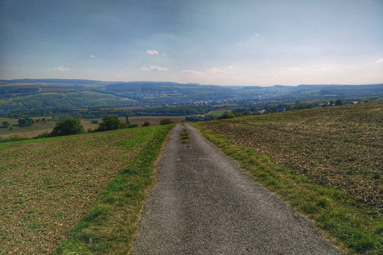 Heading down to Moselle Valley