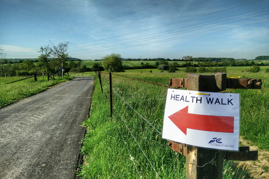Health walk initiative from European School