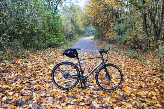 Autumn ride to work