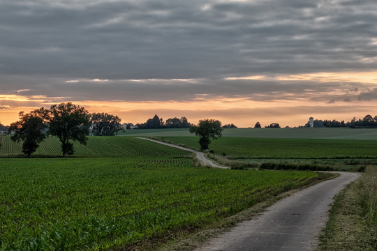PC 12 near Kahler before sunset