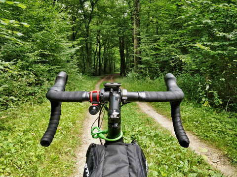 Cycling in the woods