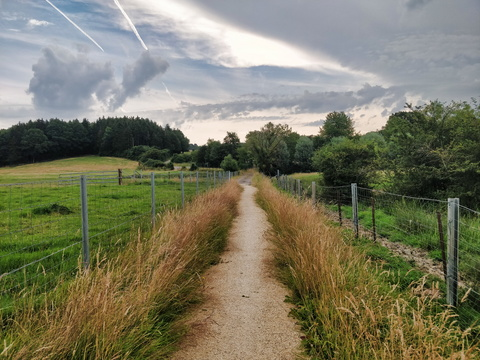 New path between Kehlen and Capellen forest