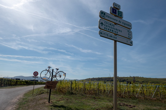 Cycling directions near Bennwihr