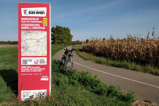Cycling information board near Krautergersheim