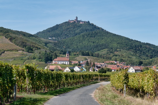The village of Orschwiller and the Haut-Kœnigsbourg Castle