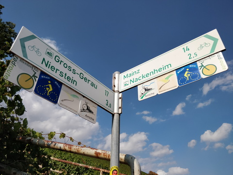 Cycling directions in Nierstein