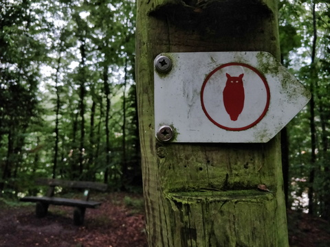 Owl hiking trail