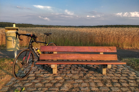 Bench on PC 9 near Roedgen