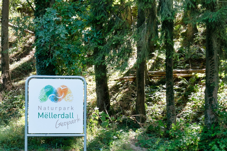 Welcome to Mullerthal