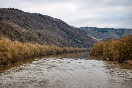 The Saar river