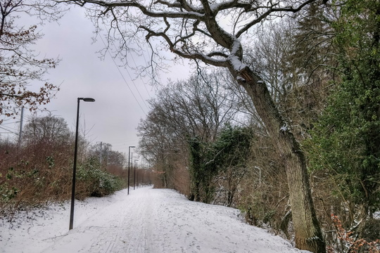Cycleway between Merl and Helfent in winter