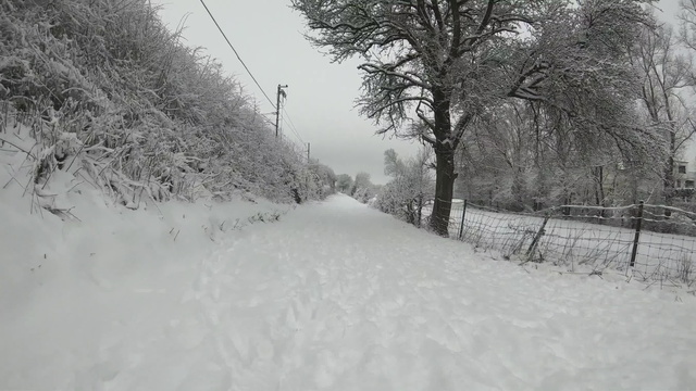 Cycling on the snow (video)