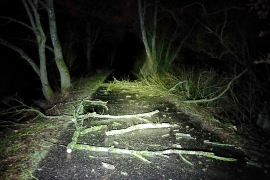 Closed PC 12 due to forestry works
