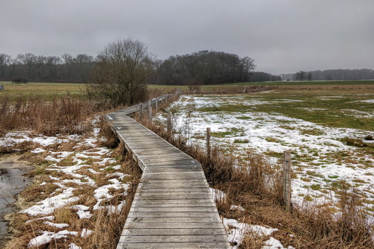 Path between Windhof and Koerich