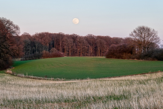 Moonrise near PC 13