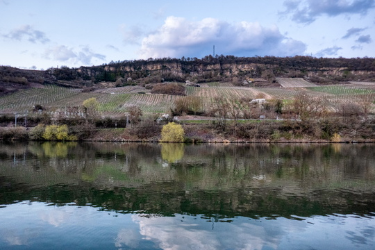 Reflections on the Moselle