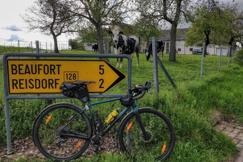 Near Reisdorf