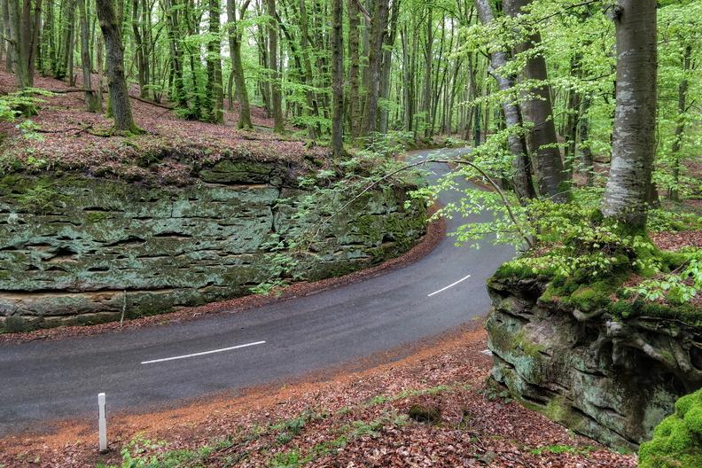 Road between Blaschette and Fischbach