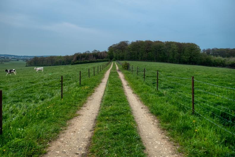 Path near Holzem