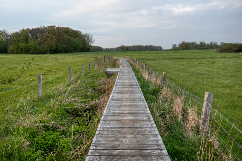 Path near Windhof