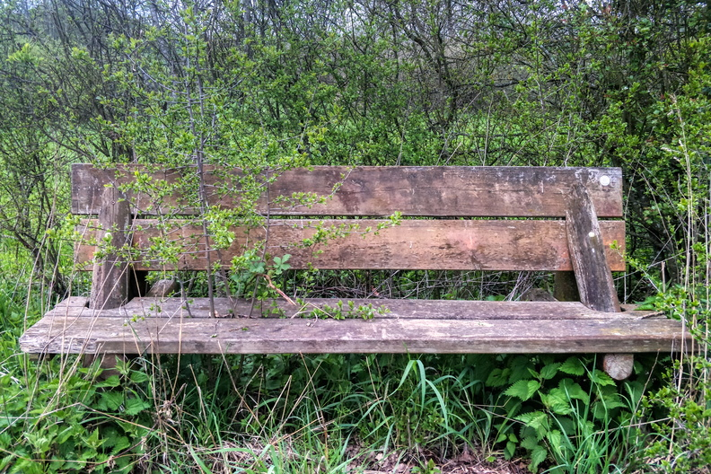 Just a bench where I wouldn't sit