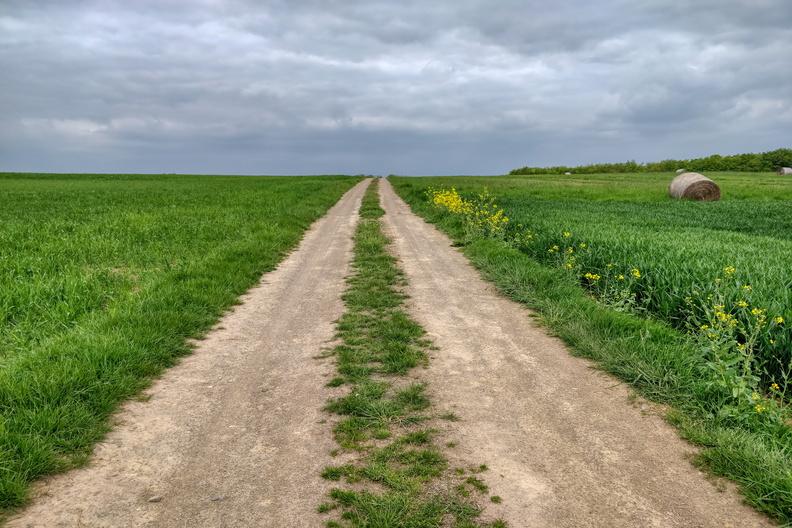 Track near Nospelt