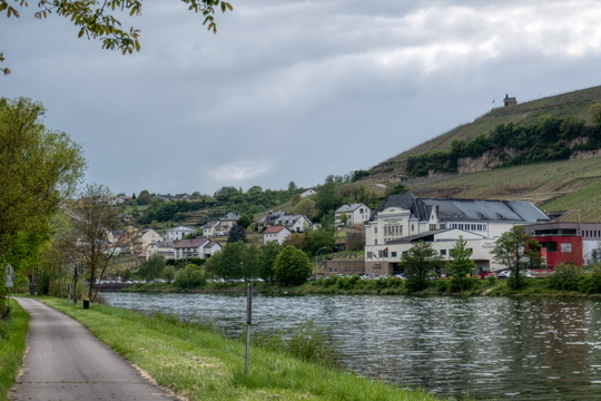 Mosel-Radweg in Wincheringen towards Wormeldange