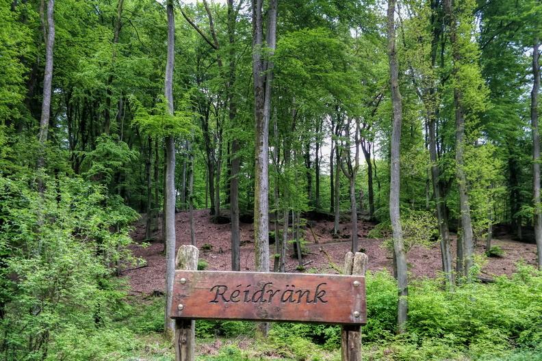 Réidränk in Bambësch