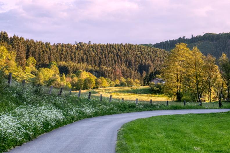 PC 22 near Lellingen