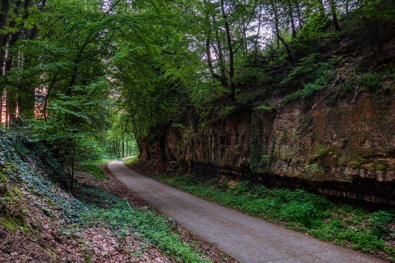 Enchanted forest near Eischen
