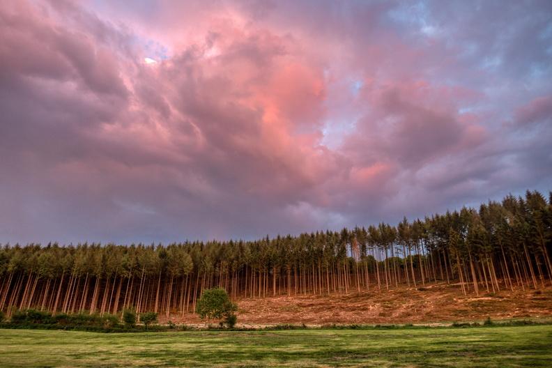 Sunset time near Hovelange