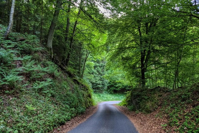 Slope down to Hunsdorf