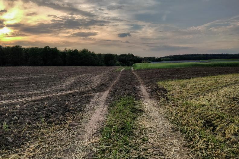 Track near Schwanenthal
