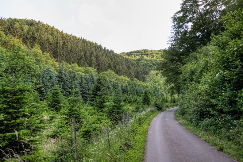 Nahe-Hunsrück-Mosel-Radweg