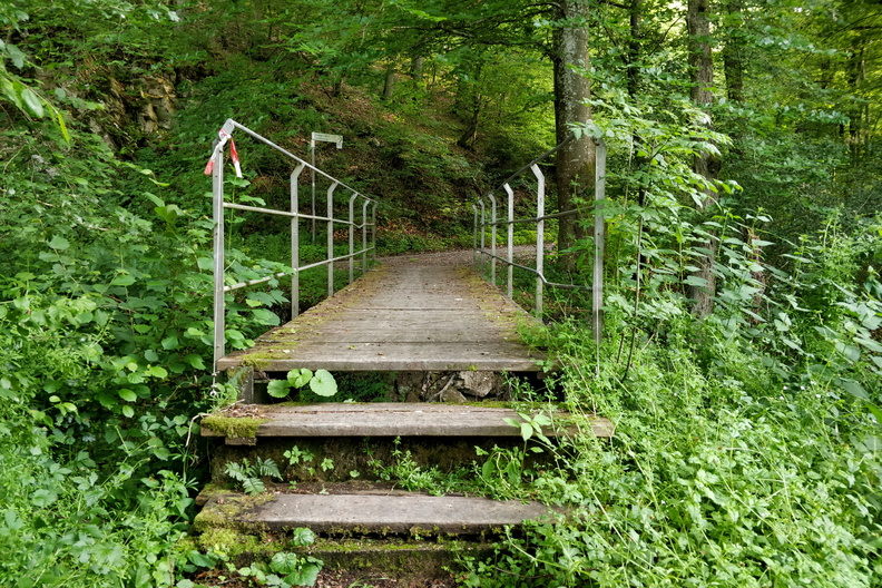 Steps on Nahe-Hunsrück-Mosel-Radweg