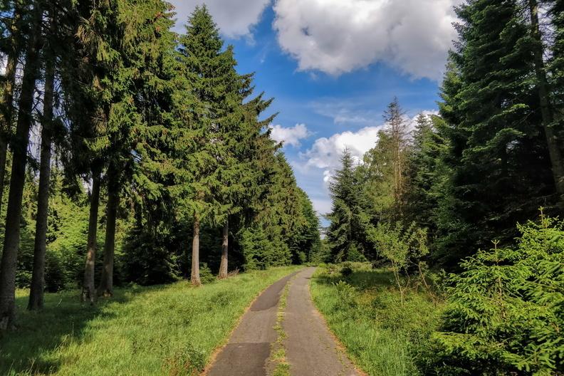 In the hills of Hunsrück-Radweg