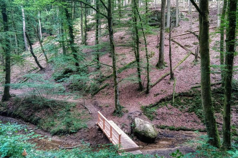 Wooden bridge in Mullerthal