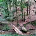 Wooden bridge in Mullerthal
