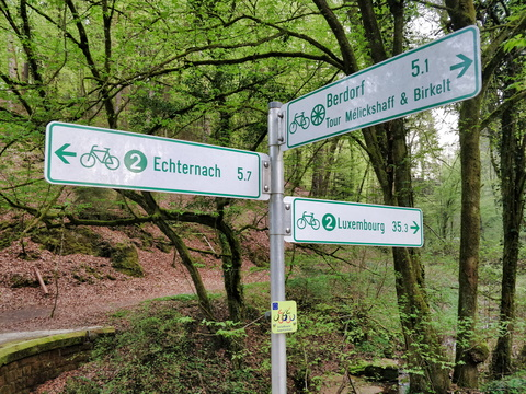 Cycling directions in Mullerthal
