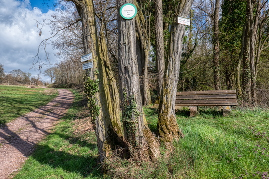 Hike from Marlenheim to Wasselonne