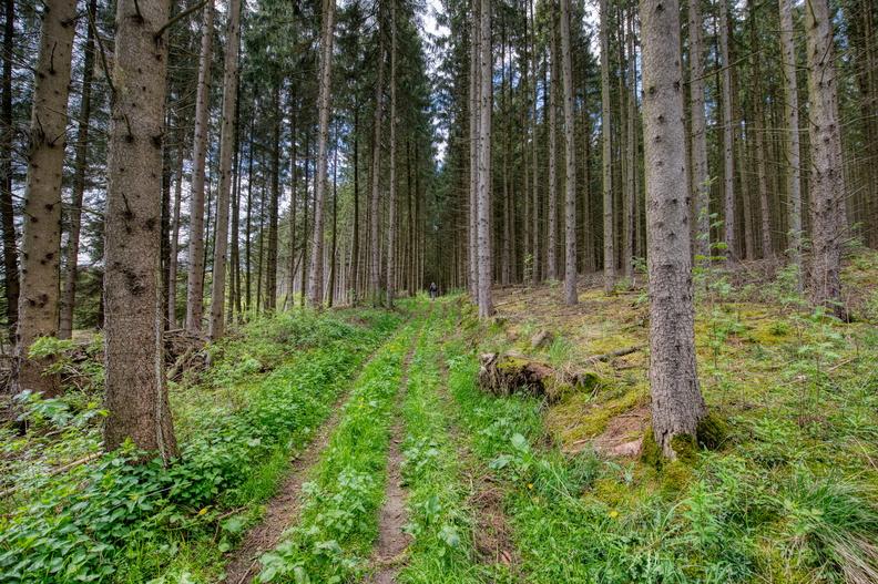 Hike sentier des passeurs