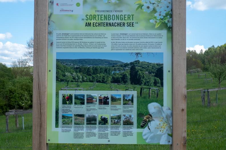 Sortenbongert information board