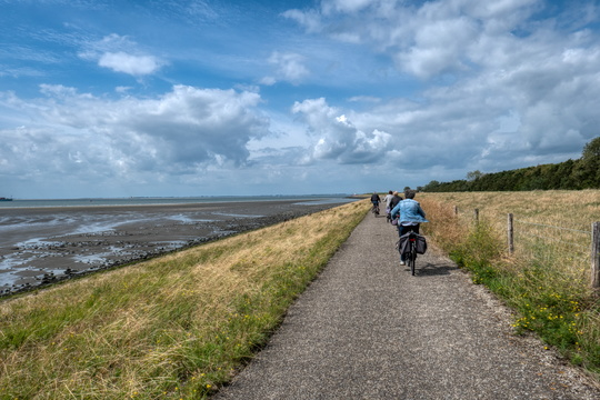 Cyclists along the North Sea