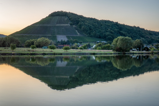 Hill reflection on the Saar river
