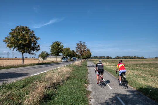 Cyclists near Fessenheim