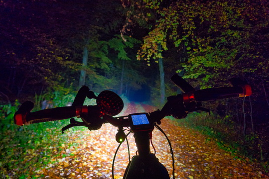 Night ride in Capellen forest